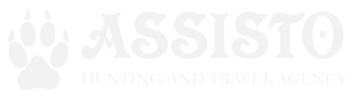 Logo-ASSISTO-eng-white
