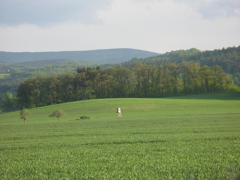2009 19